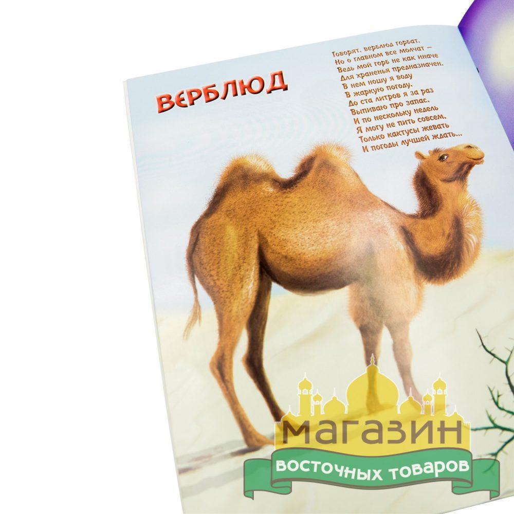 О животных в Коране